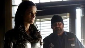 Marvel's Agents of S.H.I.E.L.D. 1×15