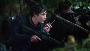 The 100 1×13